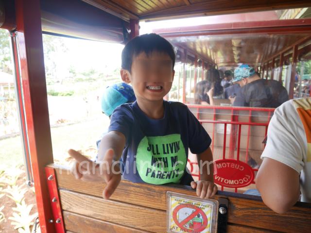 ハワイドールプランテーション パイナップル列車