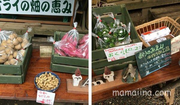 有野実苑の農園でとれた野菜販売